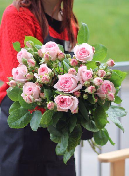 Роза кустовая Pompon