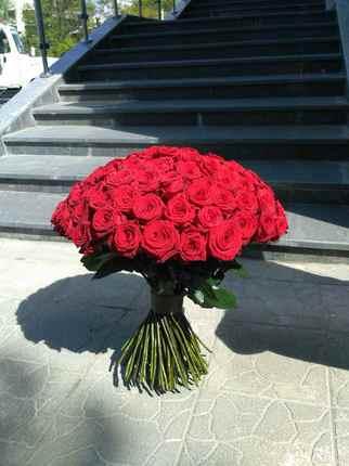 из 101 красной розы