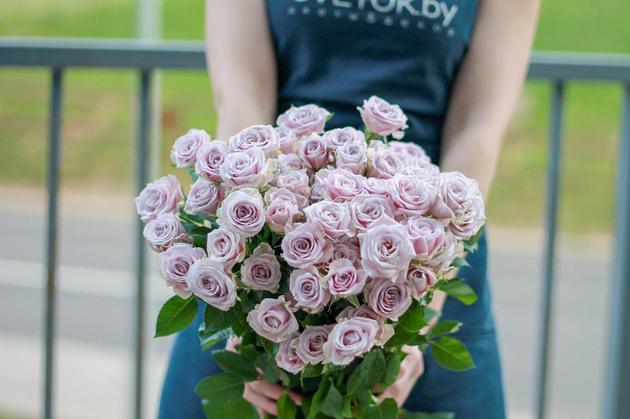 Кустовые розы Silver Shadow