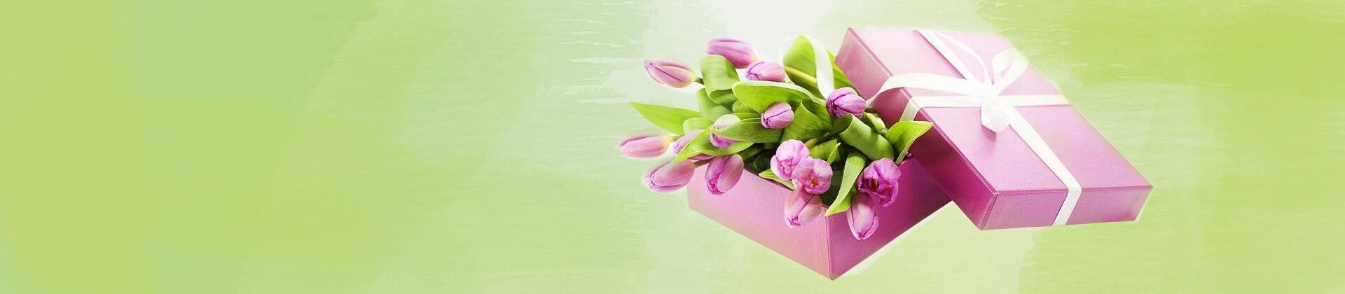 Регулярные поставки тюльпанов!