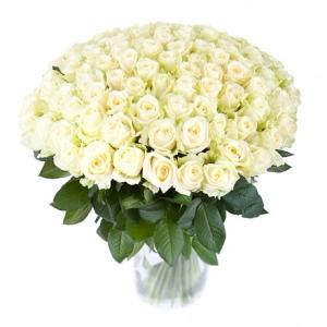 из 101 белой розы