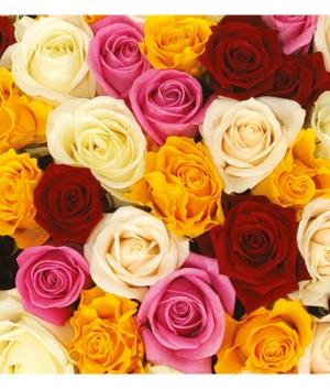 Розы в ассортименте 50 см