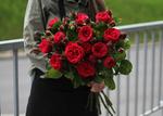 Роза кустовая Red Piano (Ред Пиано)