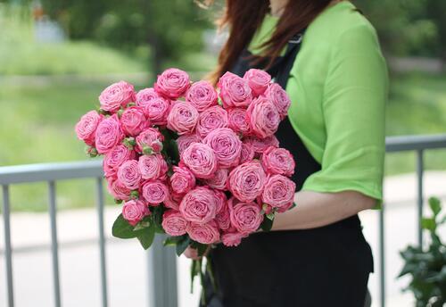 Роза кустовая Artaziya