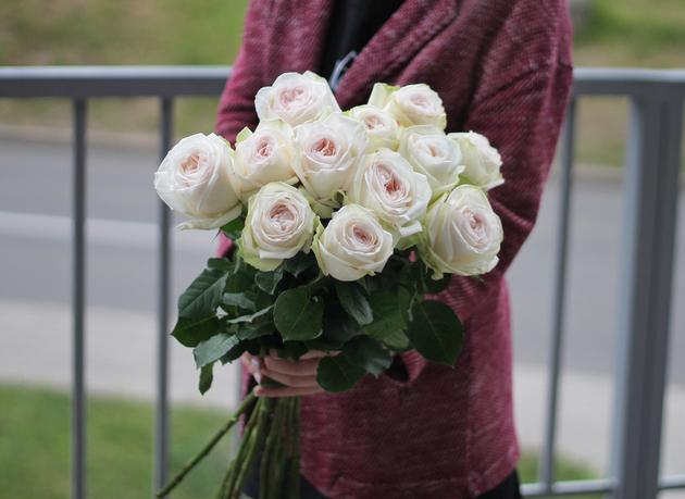Роза O'Hara (Охара)