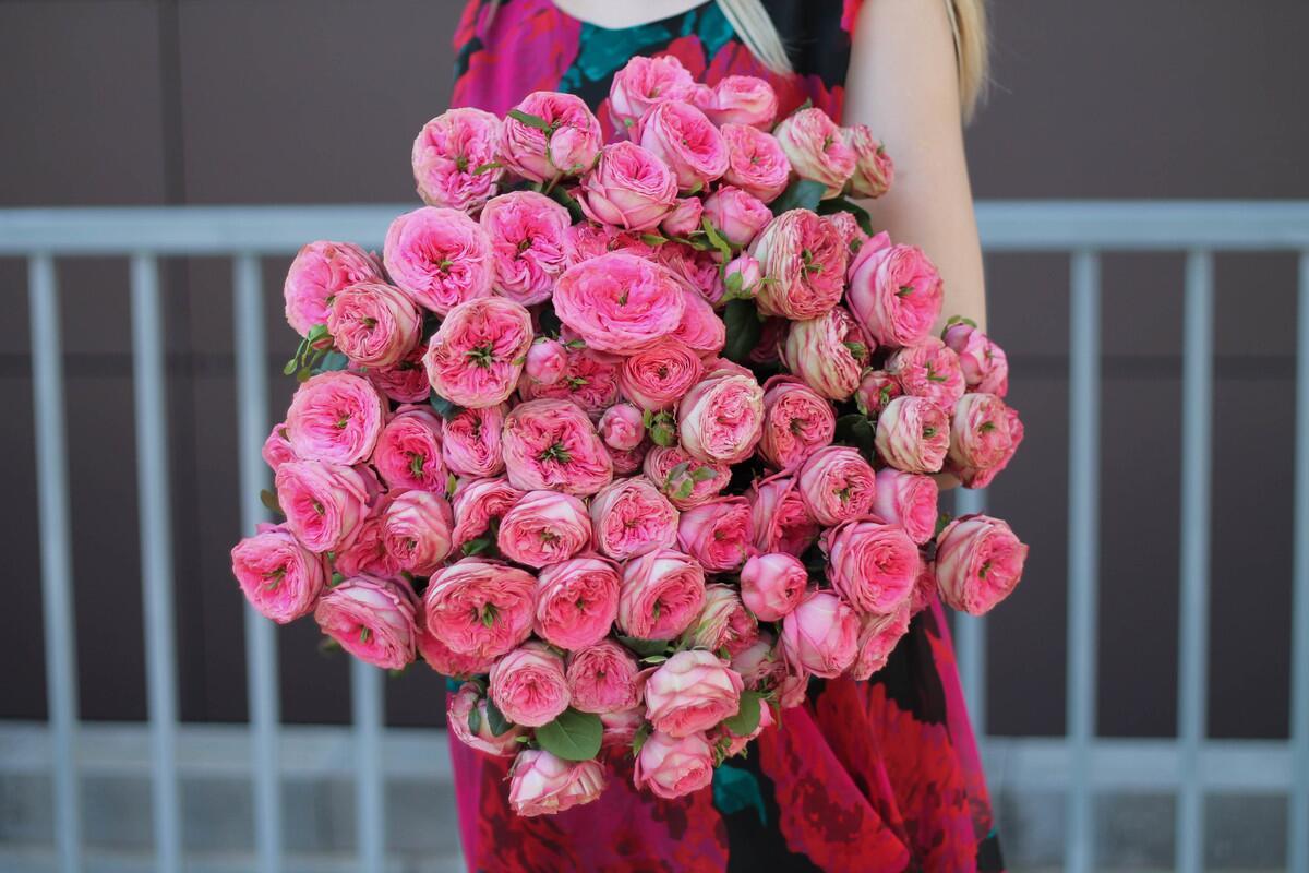 Кустовые розы Turkish Delight