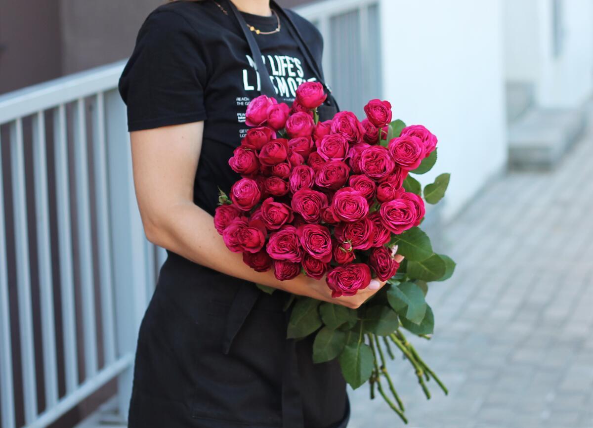 Роза кустовая Грасиэла (Graciela)