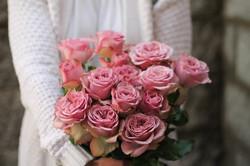 Роза Montmartr