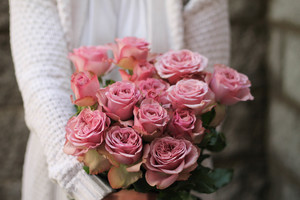 Кустовая роза Montmartr