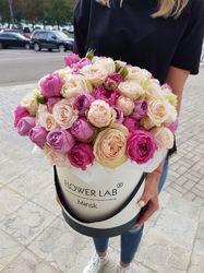 Коробка с Мисти баблз и пионовидной розой