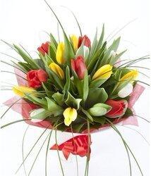 Недорогой букет тюльпанов