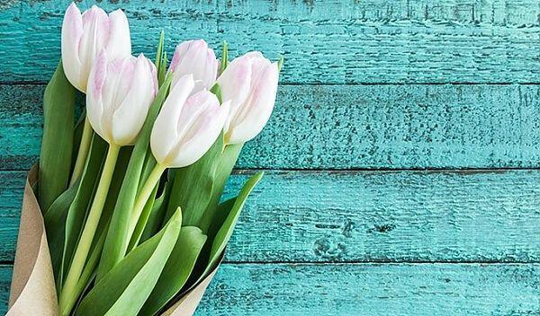 Цветов магазины минск тюльпаны, доставка ваших цветов харьков и область украина